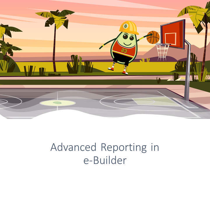 advanced reporting e-Builder